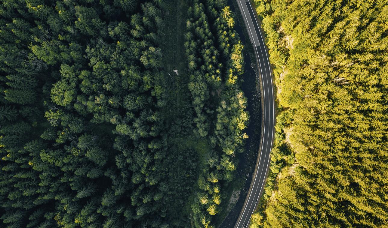 alternativas negocio, autonomos y pymes, camino a elegir